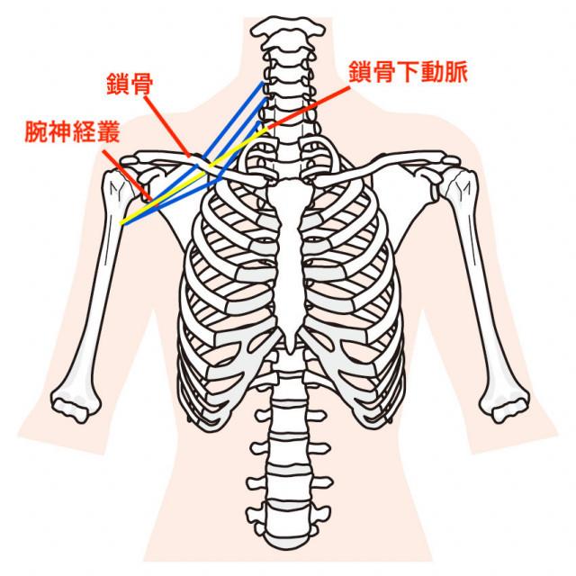 胸郭出口症候群とは