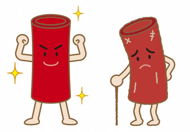 血管のイラスト